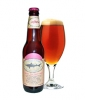 Product - Dogfish Head 90 Minute Ipa